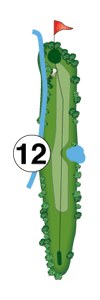 hole12-layout
